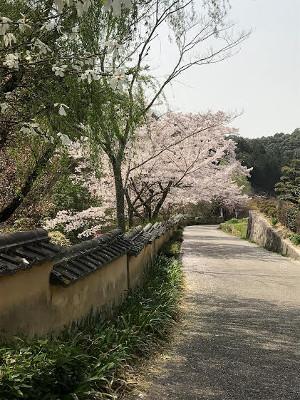 天下茶屋・土塀