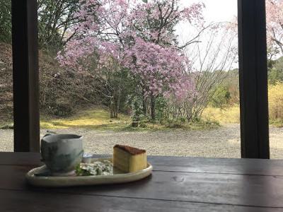 ケ-キセット・天下茶屋