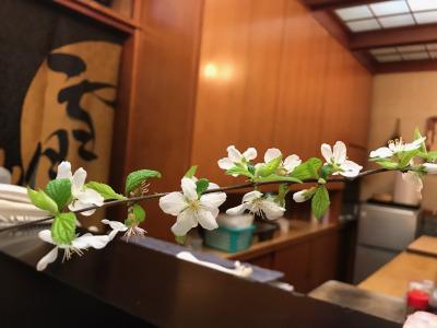 裏庭のユスラウメ(山桜桃)